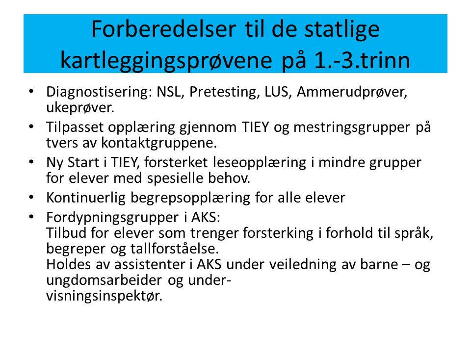 Forberedelser til de statlige kartleggingsprøvene på 1.-3.trinn • Diagnostisering: NSL, Pretesting, LUS, Ammerudprøver, ukeprøver. • Tilpasset opplæri