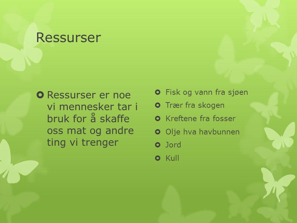 Ressurser  Ressurser er noe vi mennesker tar i bruk for å skaffe oss mat og andre ting vi trenger  Fisk og vann fra sjøen  Trær fra skogen  Krefte