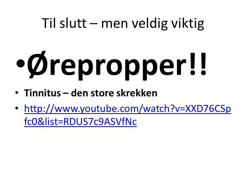 Til slutt – men veldig viktig • Ørepropper!! • Tinnitus – den store skrekken • http://www.youtube.com/watch?v=XXD76CSp fc0&list=RDUS7c9ASVfNc http://w