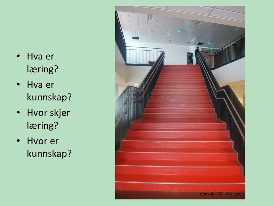 • Hva er læring? • Hva er kunnskap? • Hvor skjer læring? • Hvor er kunnskap? Copyright Stein Larsen