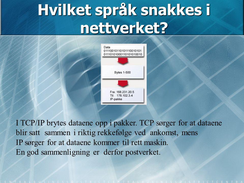 Hvilket språk snakkes i nettverket? I TCP/IP brytes dataene opp i pakker. TCP sørger for at dataene blir satt sammen i riktig rekkefølge ved ankomst,