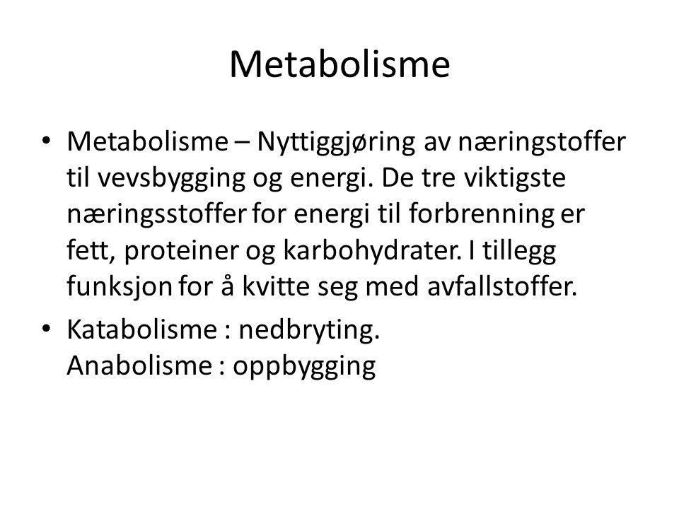 Metabolisme • Metabolisme – Nyttiggjøring av næringstoffer til vevsbygging og energi. De tre viktigste næringsstoffer for energi til forbrenning er fe