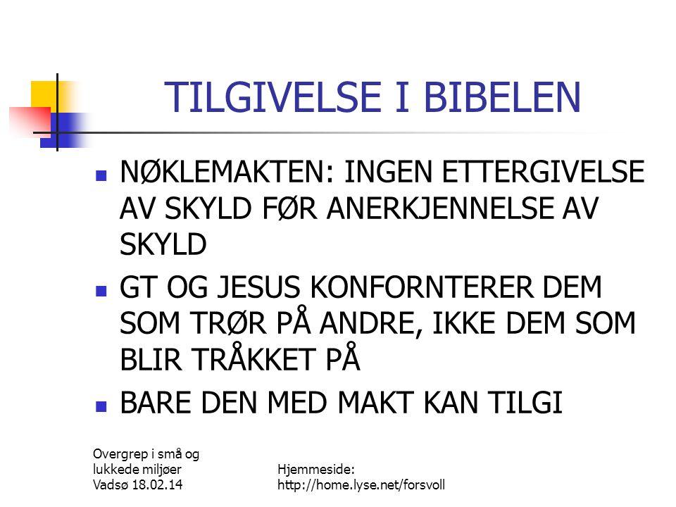 Overgrep i små og lukkede miljøer Vadsø 18.02.14 Hjemmeside: http://home.lyse.net/forsvoll NY TILLIT.