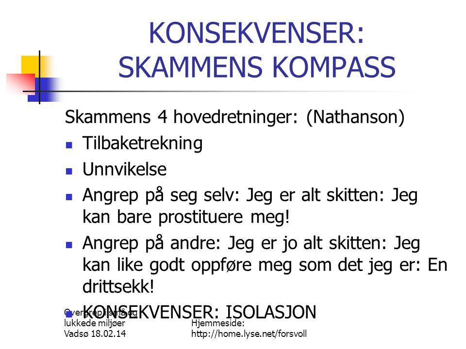 Overgrep i små og lukkede miljøer Vadsø 18.02.14 Hjemmeside: http://home.lyse.net/forsvoll KONSEKVENSER: SKAMMENS STEMMER  Flinkhet.