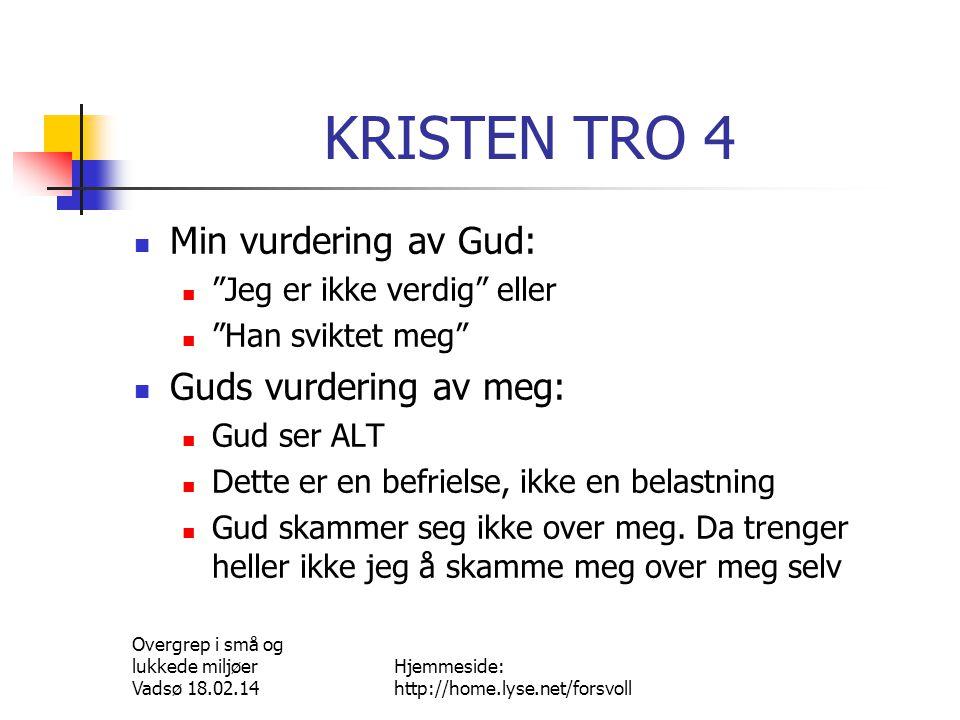 Overgrep i små og lukkede miljøer Vadsø 18.02.14 Hjemmeside: http://home.lyse.net/forsvoll HVOR KAN JEG HENVENDE MEG.
