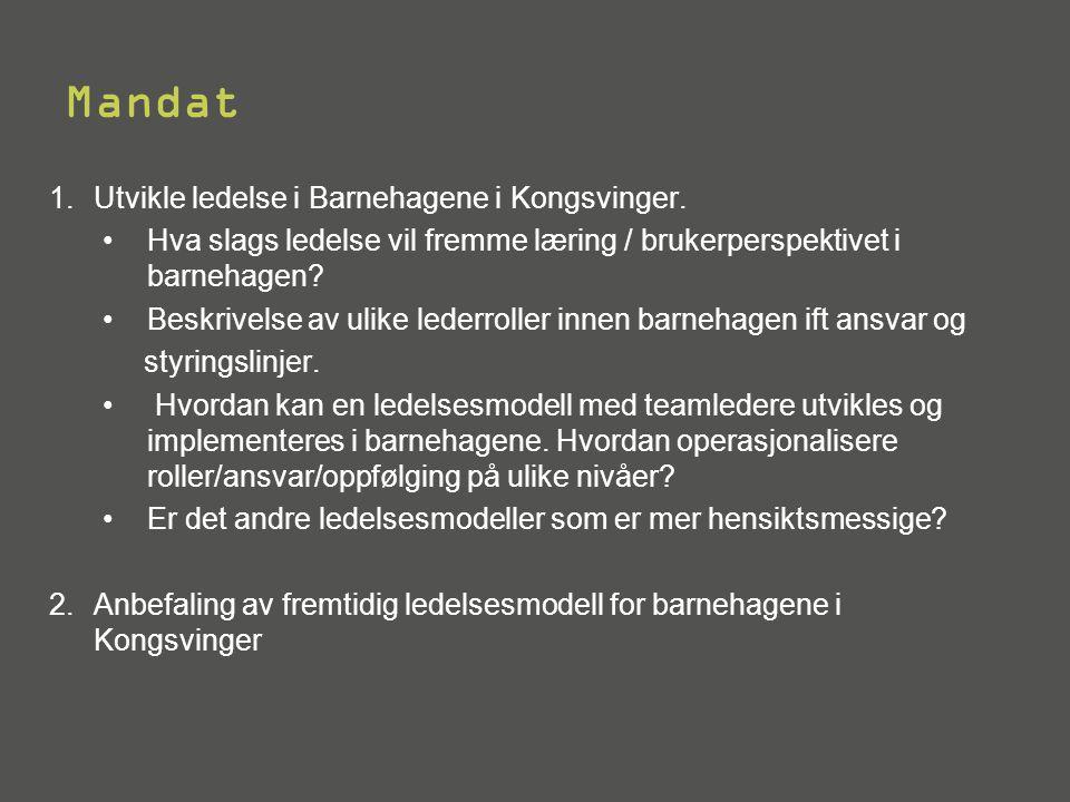 Mandat 1.Utvikle ledelse i Barnehagene i Kongsvinger. •Hva slags ledelse vil fremme læring / brukerperspektivet i barnehagen? •Beskrivelse av ulike le