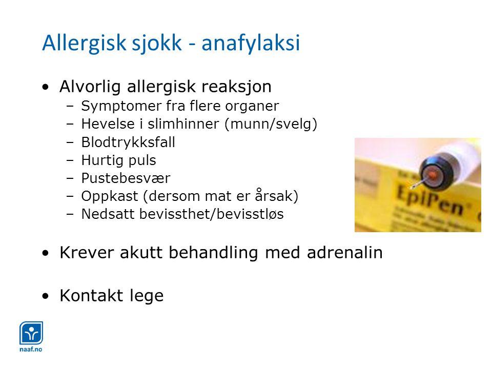 Allergisk sjokk - anafylaksi •Alvorlig allergisk reaksjon –Symptomer fra flere organer –Hevelse i slimhinner (munn/svelg) –Blodtrykksfall –Hurtig puls