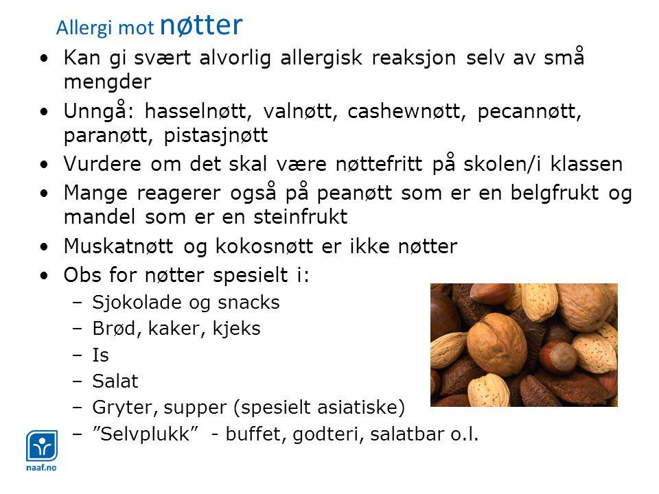 Allergi mot nøtter •Kan gi svært alvorlig allergisk reaksjon selv av små mengder •Unngå: hasselnøtt, valnøtt, cashewnøtt, pecannøtt, paranøtt, pistasjnøtt •Vurdere om det skal være nøttefritt på skolen/i klassen •Mange reagerer også på peanøtt som er en belgfrukt og mandel som er en steinfrukt •Muskatnøtt og kokosnøtt er ikke nøtter •Obs for nøtter spesielt i: –Sjokolade og snacks –Brød, kaker, kjeks –Is –Salat –Gryter, supper (spesielt asiatiske) – Selvplukk - buffet, godteri, salatbar o.l.