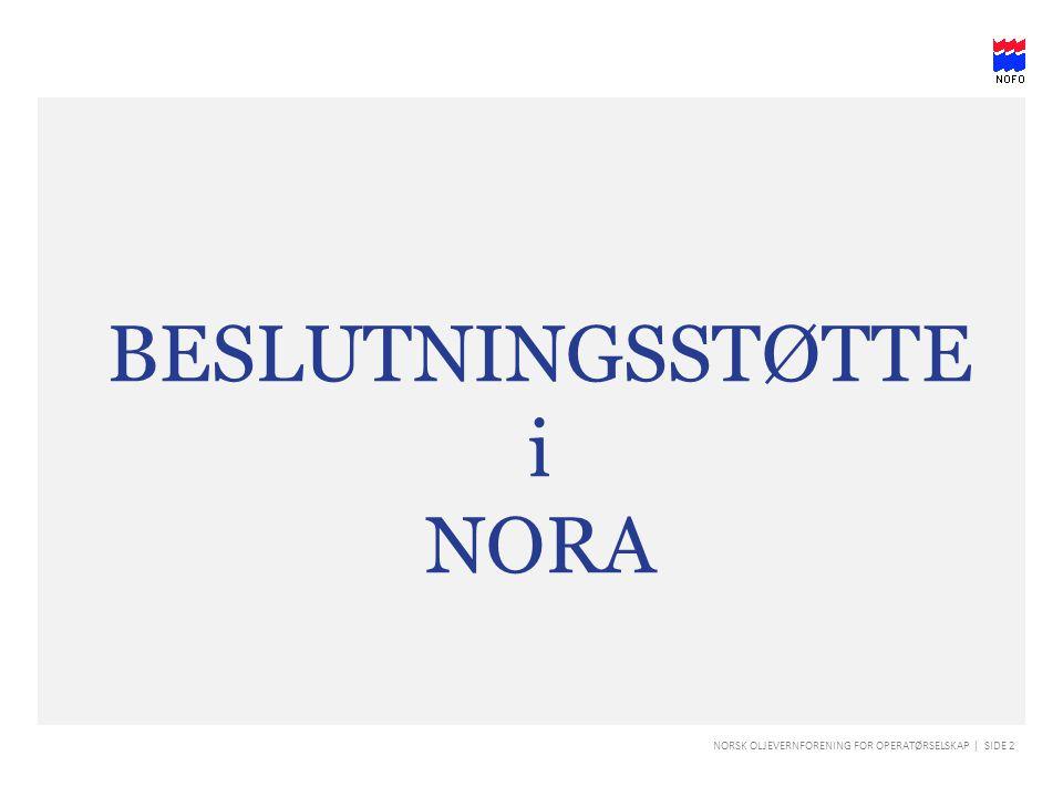 NORSK OLJEVERNFORENING FOR OPERATØRSELSKAP | SIDE 13 Arbeidsoppgaver i NORA - Roller Under «Roller» er det nå lagt inn alle posisjonene i beredskapssentralen.