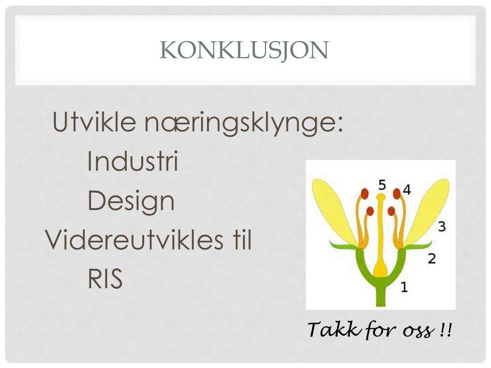 KONKLUSJON Utvikle næringsklynge: Industri Design Videreutvikles til RIS Takk for oss !!