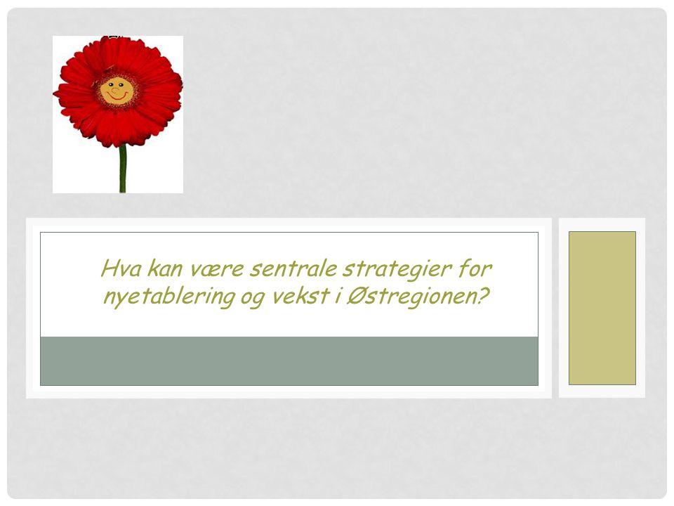 Hva kan være sentrale strategier for nyetablering og vekst i Østregionen?