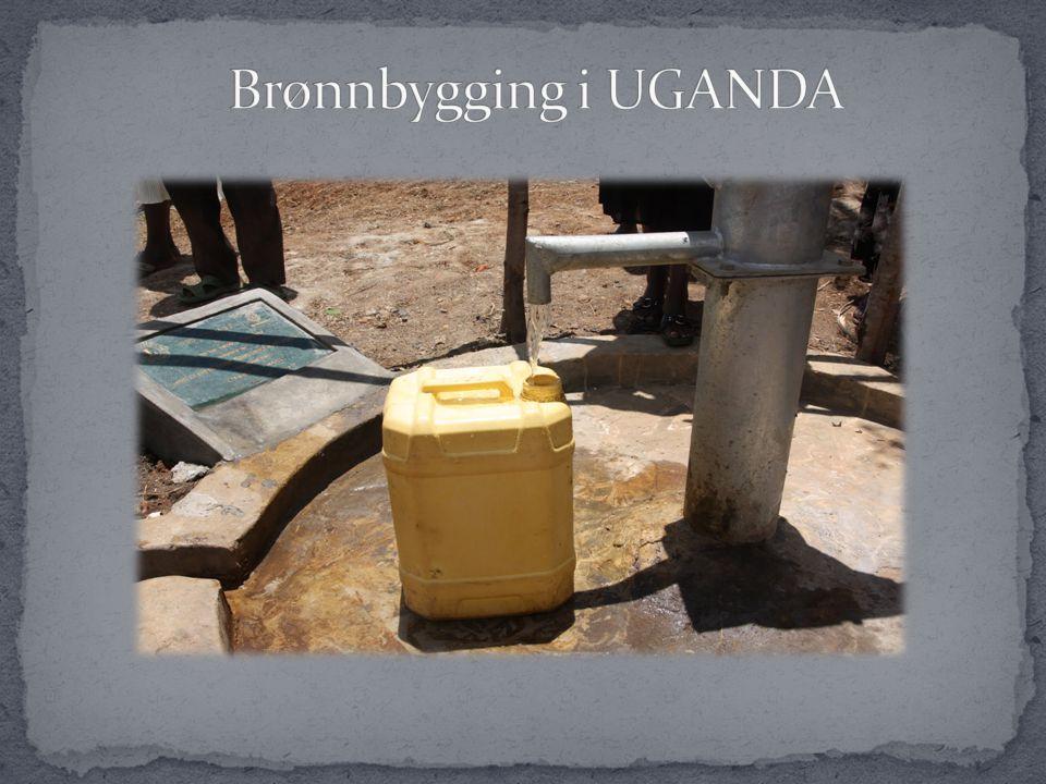 Mange sykdommer skyldes dårlig vann.