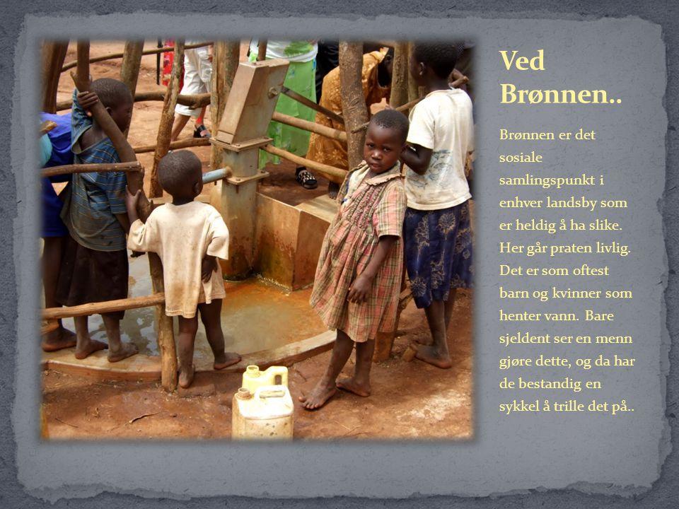 Brønnen er det sosiale samlingspunkt i enhver landsby som er heldig å ha slike.