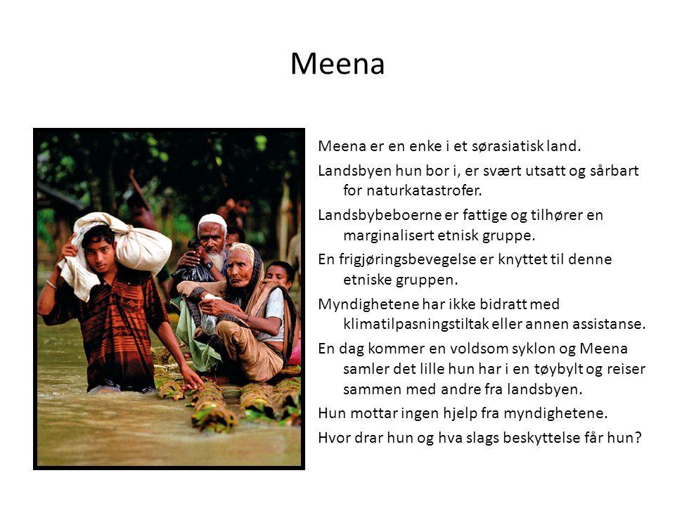 Meena Meena er en enke i et sørasiatisk land.