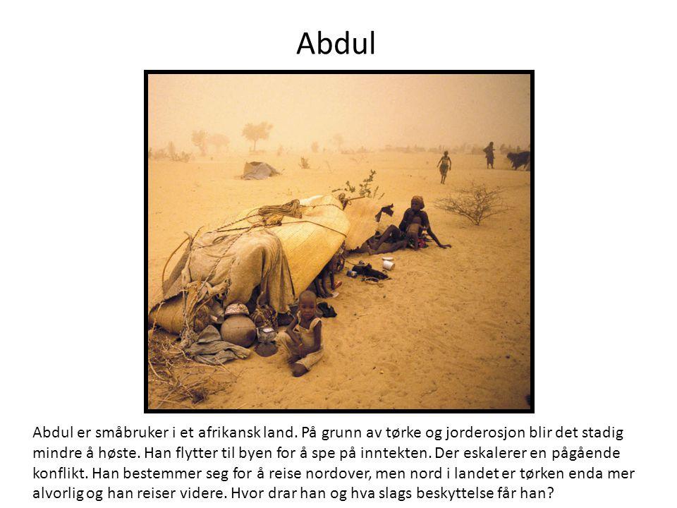 Abdul Abdul er småbruker i et afrikansk land.