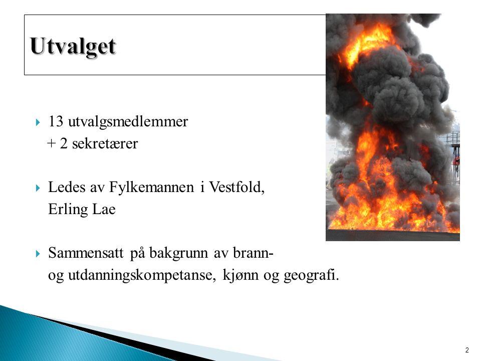  13 utvalgsmedlemmer + 2 sekretærer  Ledes av Fylkemannen i Vestfold, Erling Lae  Sammensatt på bakgrunn av brann- og utdanningskompetanse, kjønn og geografi.