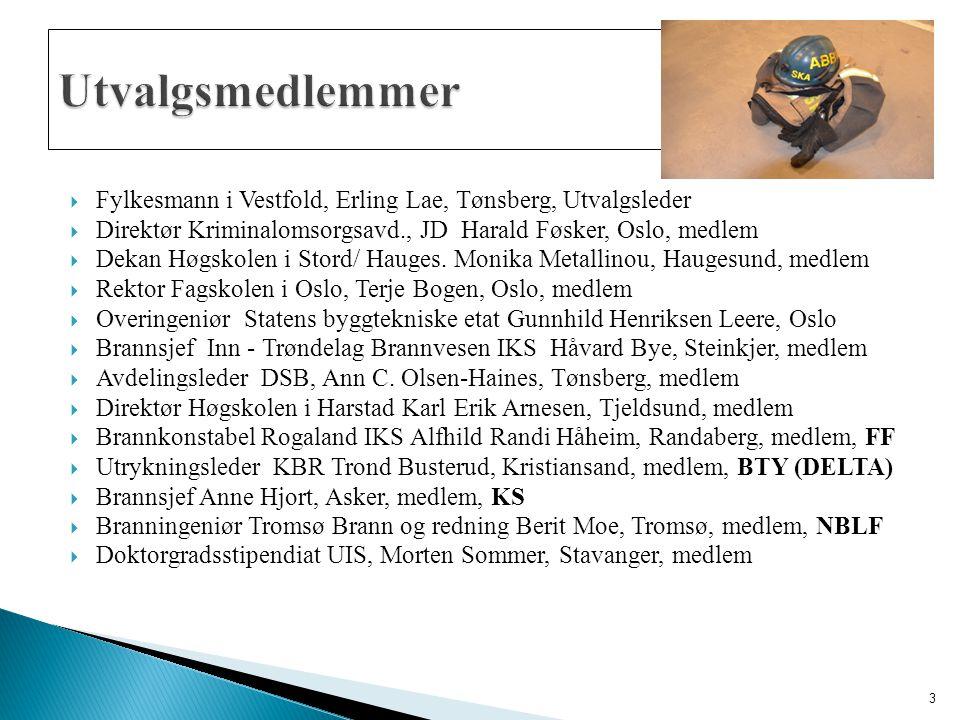  Fylkesmann i Vestfold, Erling Lae, Tønsberg, Utvalgsleder  Direktør Kriminalomsorgsavd., JD Harald Føsker, Oslo, medlem  Dekan Høgskolen i Stord/ Hauges.
