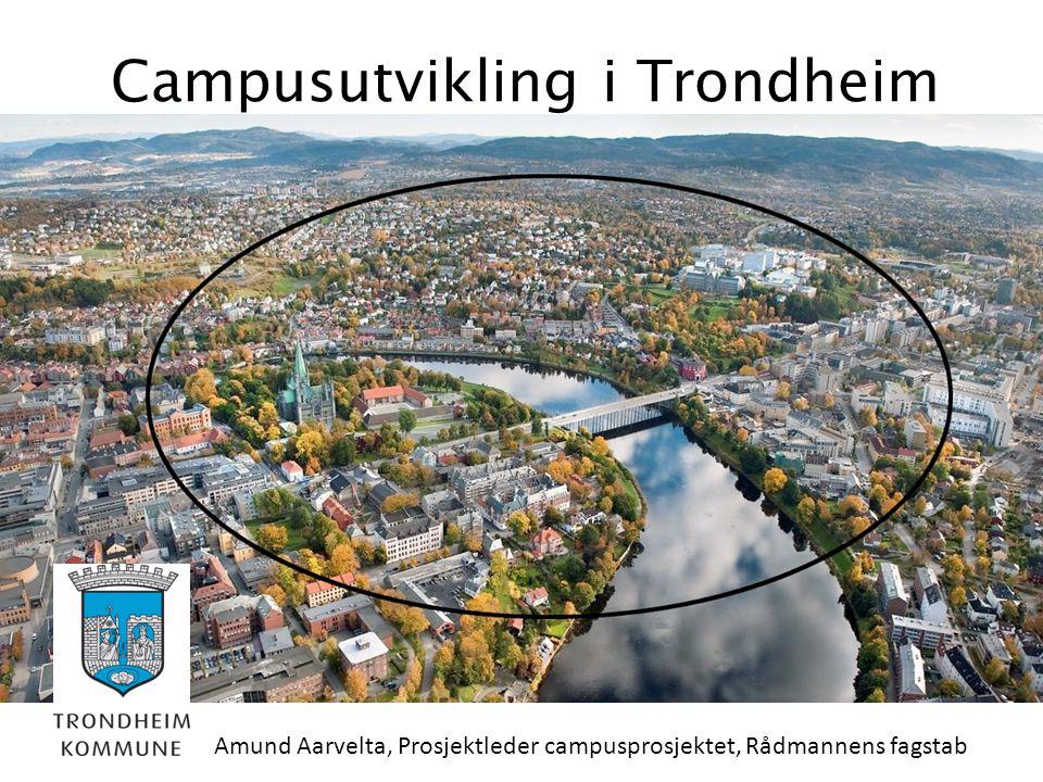 Campusutvikling i Trondheim Amund Aarvelta, Prosjektleder campusprosjektet, Rådmannens fagstab