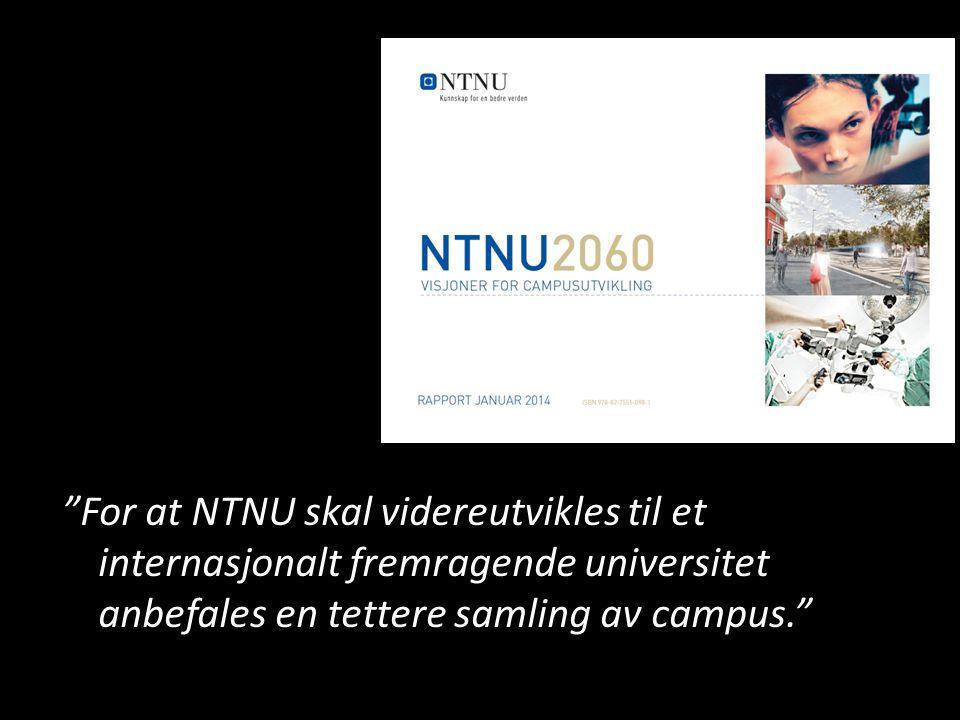 """""""For at NTNU skal videreutvikles til et internasjonalt fremragende universitet anbefales en tettere samling av campus."""""""