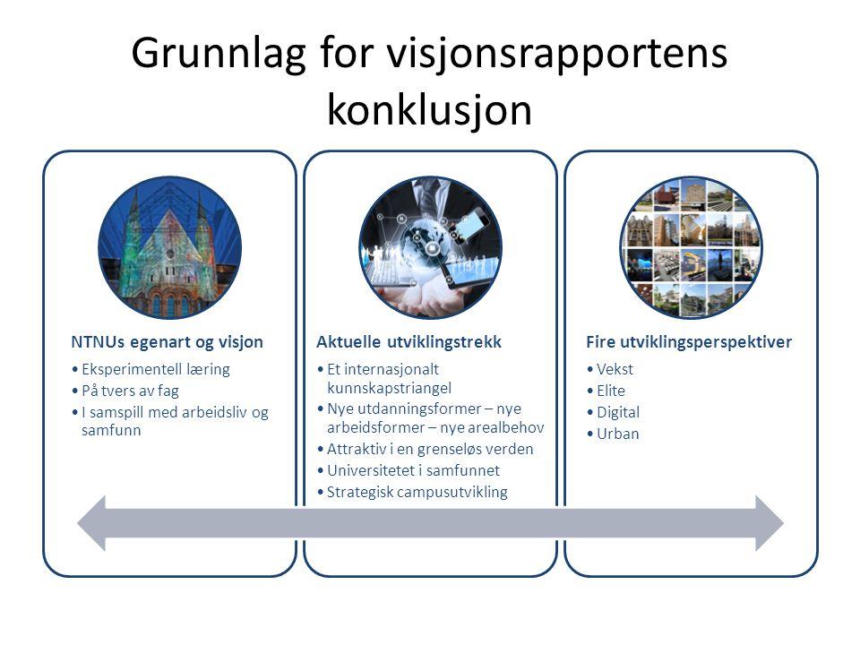 Grunnlag for visjonsrapportens konklusjon NTNUs egenart og visjon •Eksperimentell læring •På tvers av fag •I samspill med arbeidsliv og samfunn Aktuel