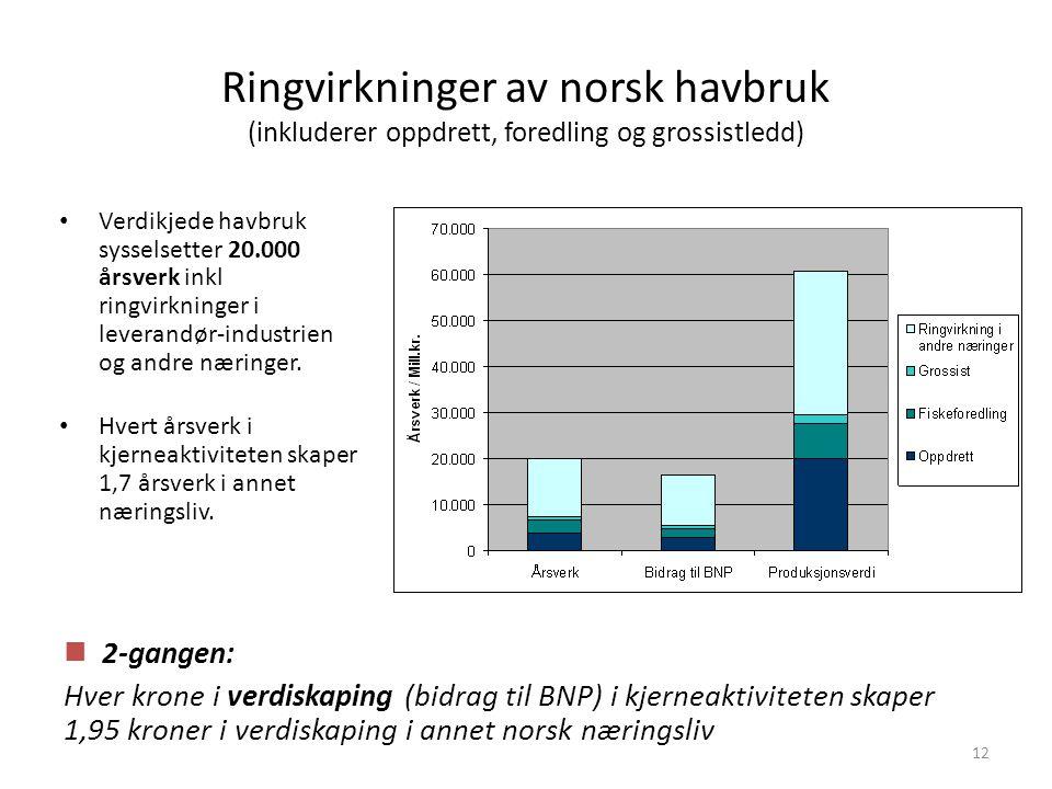 12 Ringvirkninger av norsk havbruk (inkluderer oppdrett, foredling og grossistledd) • Verdikjede havbruk sysselsetter 20.000 årsverk inkl ringvirkning