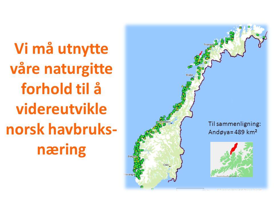 Vi må utnytte våre naturgitte forhold til å videreutvikle norsk havbruks- næring Pr. 29.11.2009 Til sammenligning: Andøya= 489 km 2