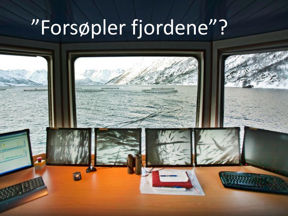 """""""Forsøpler fjordene""""?"""