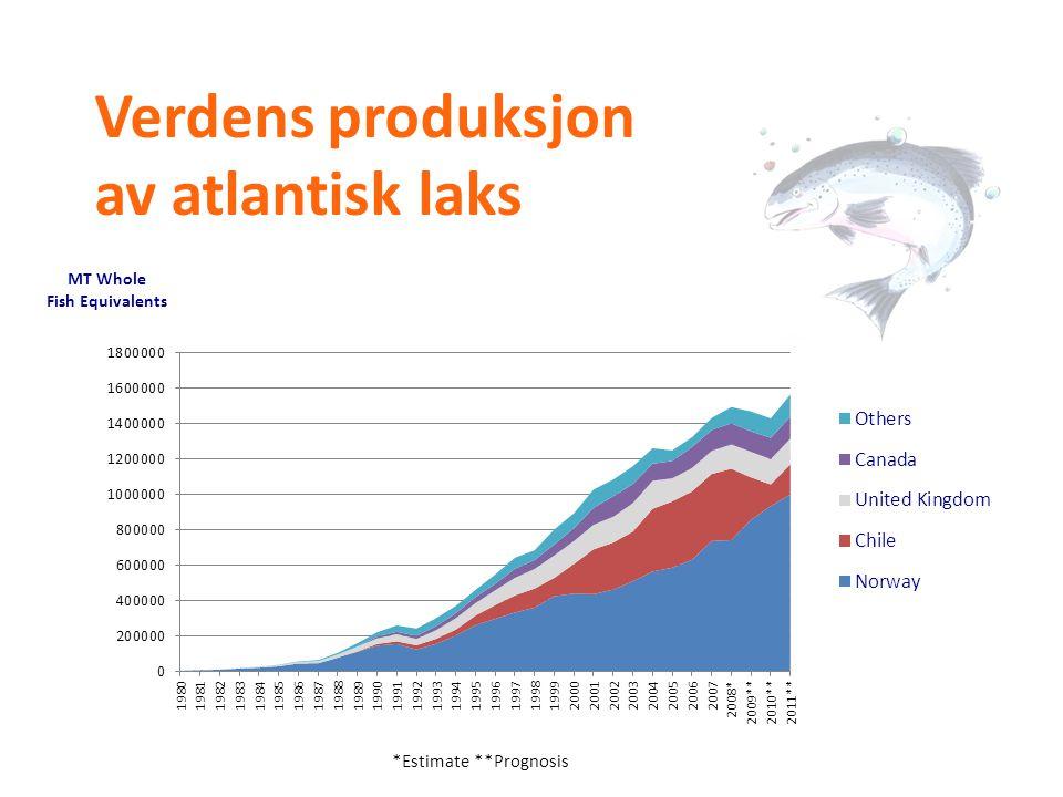 Verdens produksjon av atlantisk laks *Estimate **Prognosis
