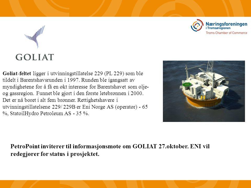 Goliat-feltet ligger i utvinningstillatelse 229 (PL 229) som ble tildelt i Barentshavsrunden i 1997.