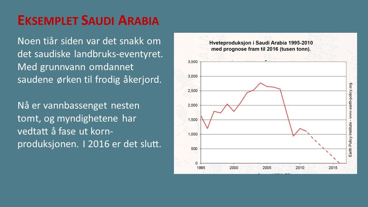 E KSEMPLET S AUDI A RABIA Noen tiår siden var det snakk om det saudiske landbruks-eventyret. Med grunnvann omdannet saudene ørken til frodig åkerjord.