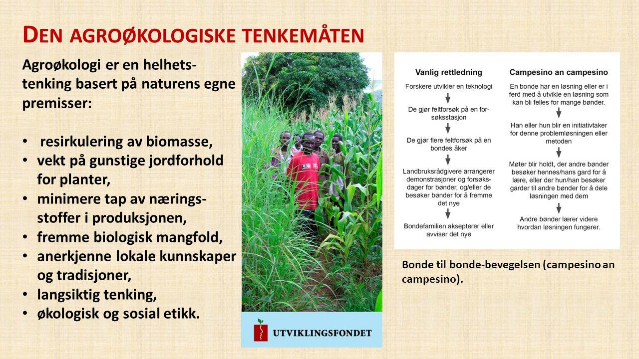 D EN AGROØKOLOGISKE TENKEMÅTEN Agroøkologi er en helhets- tenking basert på naturens egne premisser: • resirkulering av biomasse, • vekt på gunstige j