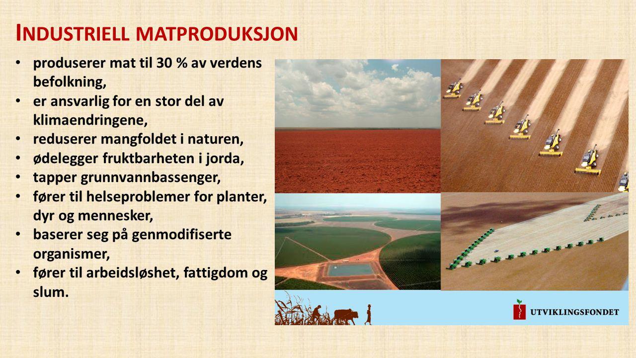 I NDUSTRIELL MATPRODUKSJON • produserer mat til 30 % av verdens befolkning, • er ansvarlig for en stor del av klimaendringene, • reduserer mangfoldet