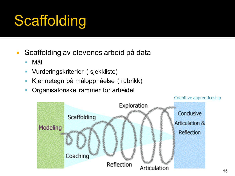  Scaffolding av elevenes arbeid på data  Mål  Vurderingskriterier ( sjekkliste)  Kjennetegn på måloppnåelse ( rubrikk)  Organisatoriske rammer for arbeidet Cognitive apprenticeship 15