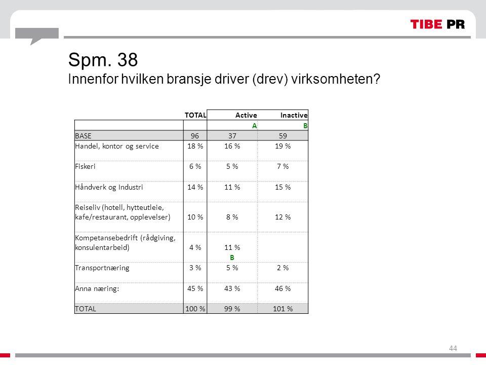 Spm. 38 Innenfor hvilken bransje driver (drev) virksomheten? TOTALActiveInactive AB BASE963759 Handel, kontor og service18 %16 %19 % Fiskeri6 %5 %7 %