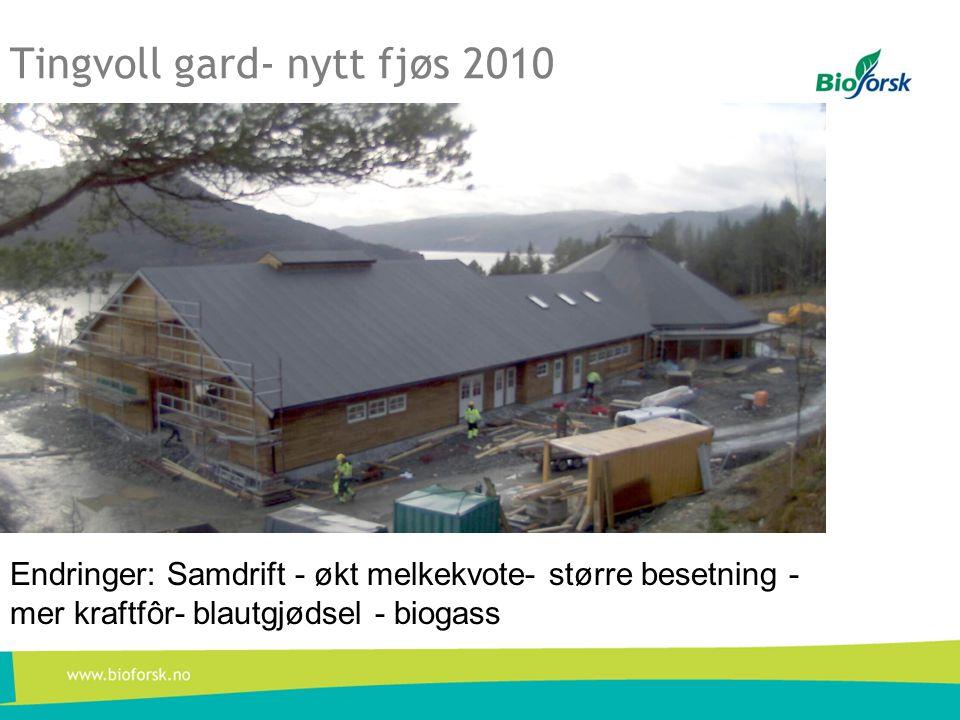 Tingvoll gard- nytt fjøs 2010 Endringer: Samdrift - økt melkekvote- større besetning - mer kraftfôr- blautgjødsel - biogass