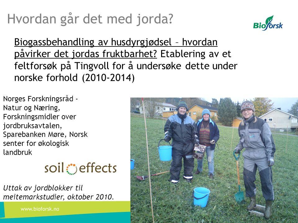 Hvordan går det med jorda? Biogassbehandling av husdyrgjødsel – hvordan påvirker det jordas fruktbarhet? Etablering av et feltforsøk på Tingvoll for å