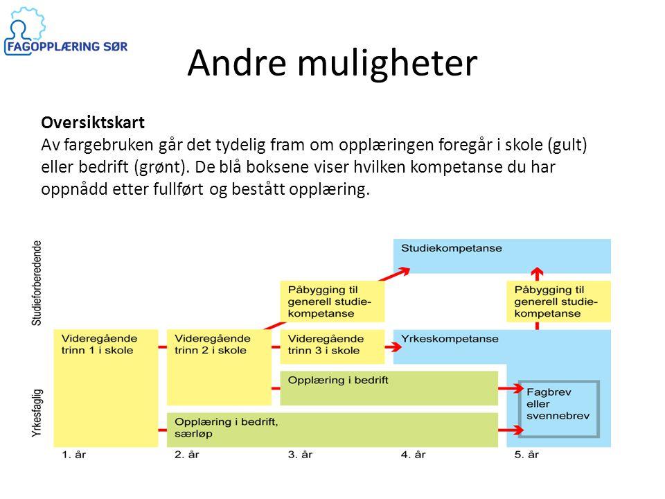 Andre muligheter Oversiktskart Av fargebruken går det tydelig fram om opplæringen foregår i skole (gult) eller bedrift (grønt). De blå boksene viser h