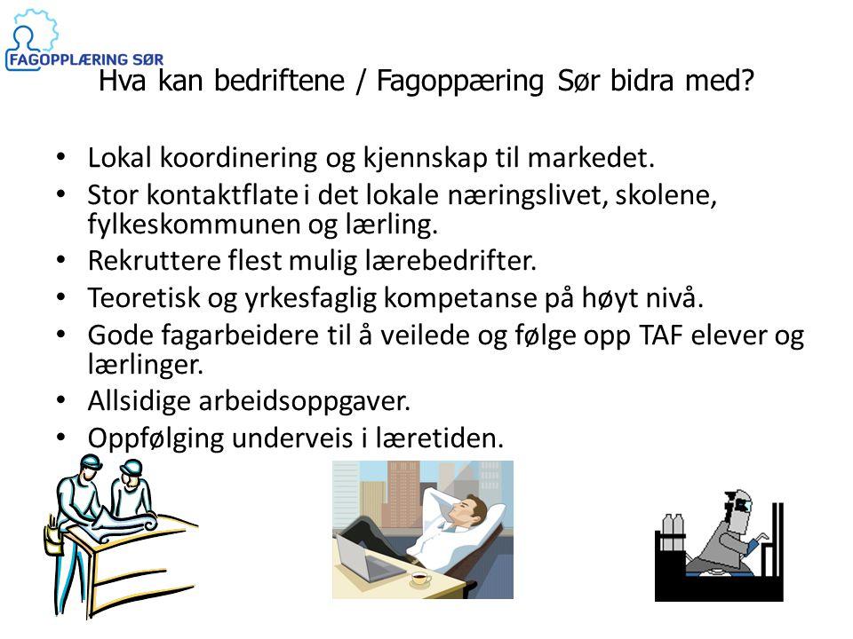 Hva kan bedriftene / Fagoppæring Sør bidra med? • Lokal koordinering og kjennskap til markedet. • Stor kontaktflate i det lokale næringslivet, skolene