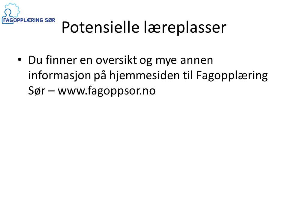 Potensielle læreplasser • Du finner en oversikt og mye annen informasjon på hjemmesiden til Fagopplæring Sør – www.fagoppsor.no