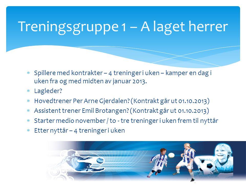  Spillere med kontrakter – 4 treninger i uken – kamper en dag i uken fra og med midten av januar 2013.