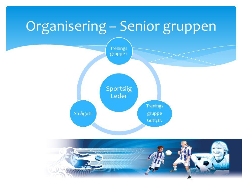 Organisering – Senior gruppen Sportslig Leder Trenings gruppe 1 Trenings gruppe Gutt/Jr. Smågutt