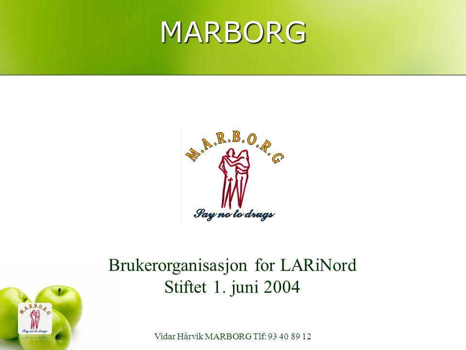 MARBORG Brukerorganisasjon for LARiNord Stiftet 1. juni 2004 Vidar Hårvik MARBORG Tlf: 93 40 89 12