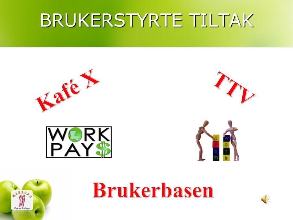 BRUKERSTYRTE TILTAK