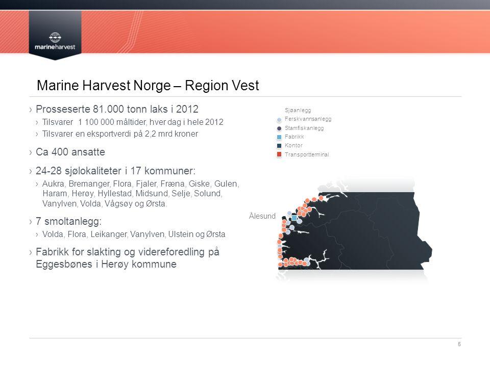Svært begrenset arealbruk 16 Arealbeslag samlet havbruk versus jordbruk i Norge: ›Havbruk*: 200 km2 (= Karmøy) ›Jordbruk: 10 200 km2 (= Rogaland) 0,06 promille av tilgjengelig sjøareal * Inkludert fiskeforbudssone.