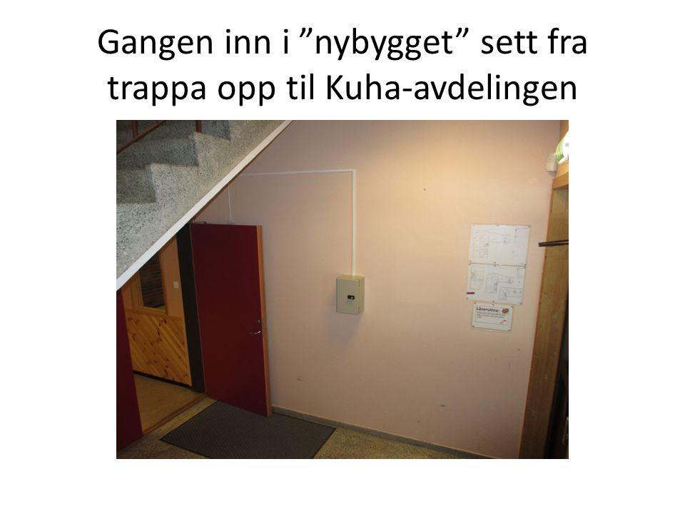 """Gangen inn i """"nybygget"""" sett fra trappa opp til Kuha-avdelingen"""