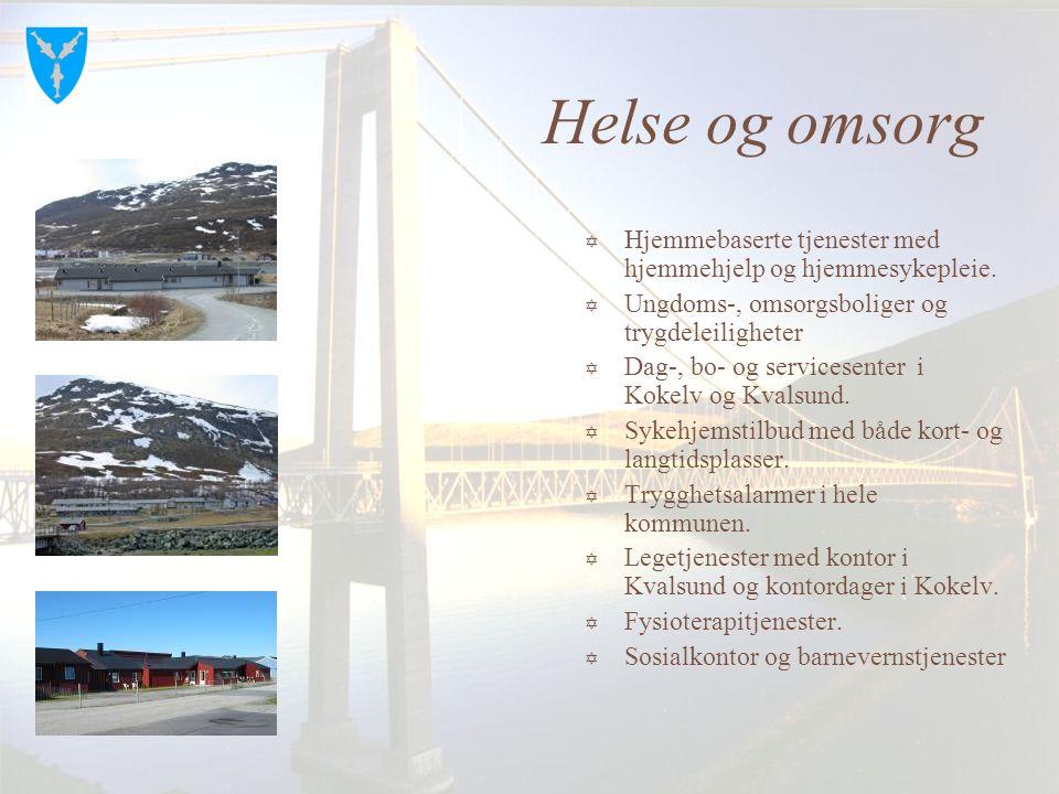 Bedriftspresentasjon  Skaidicenteret, bensin, scooter, kro, motell  Kvalsund Aggregates, pukkverk  Andersen Fiskebåtrederi.  Kvalsund Maskin og tr