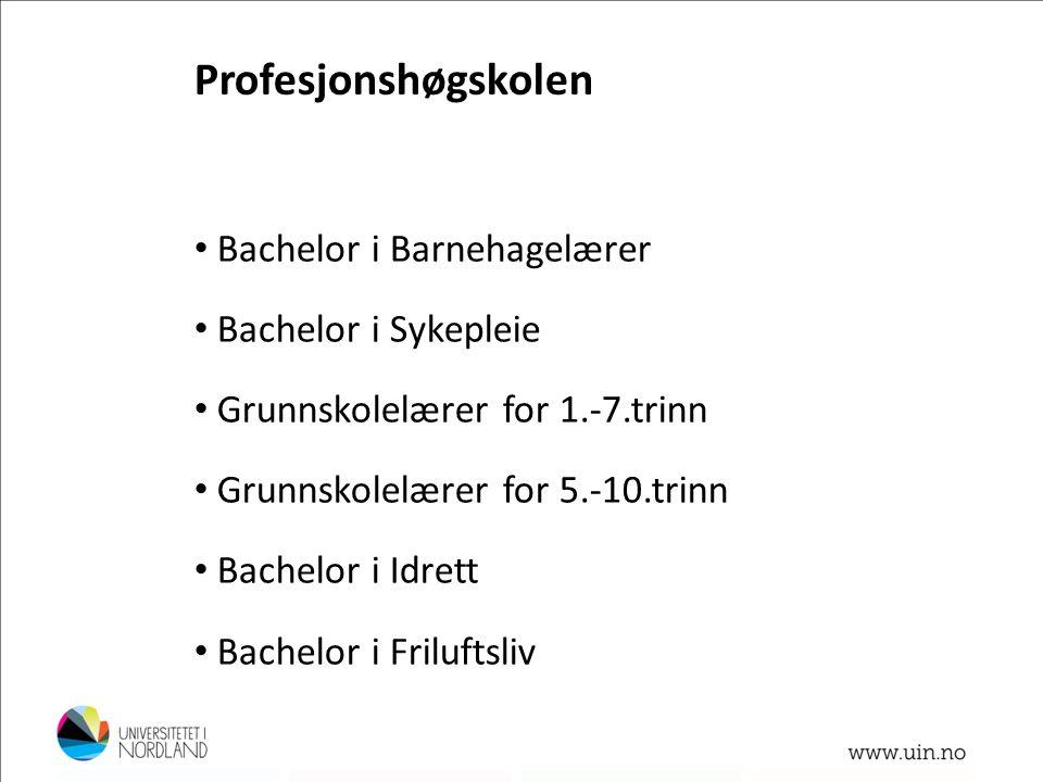 • Bachelor i Barnehagelærer • Bachelor i Sykepleie • Grunnskolelærer for 1.-7.trinn • Grunnskolelærer for 5.-10.trinn • Bachelor i Idrett • Bachelor i