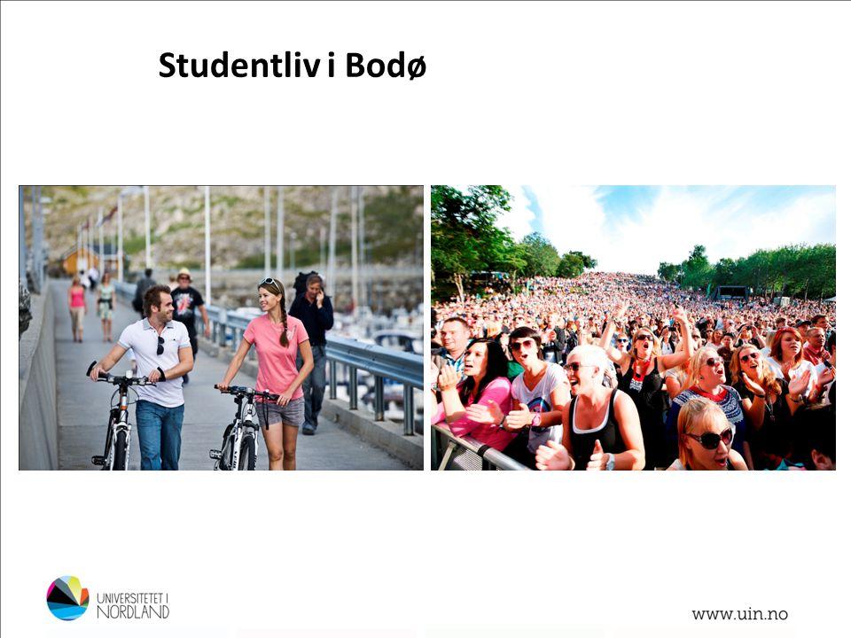 Studentliv i Bodø Foto: Terje Rakke Foto: Lillian Jonassen
