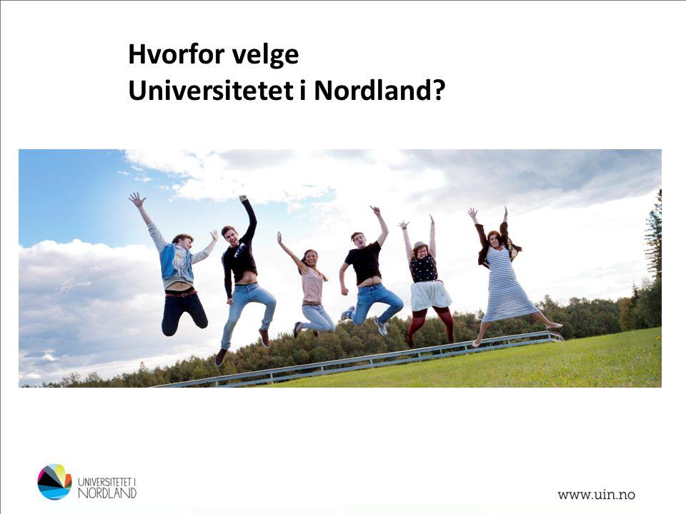 Hvorfor velge Universitetet i Nordland? Foto: Lillian Jonassen