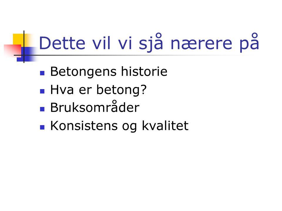 Betong i bruk Av Ståle, Dat og Hans